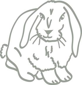 Wandtattoo Hase Wandbilder Fur Kindgerechtes Wohnen Im